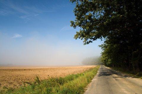 FOTKA - Mlhy na polích