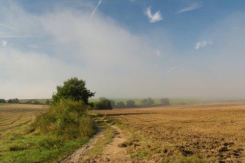 FOTKA - Mlhy na polích .