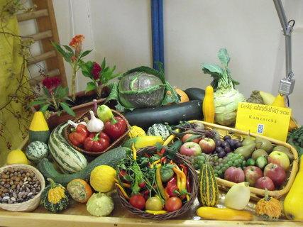 FOTKA - Výstava zeleniny a ovoce