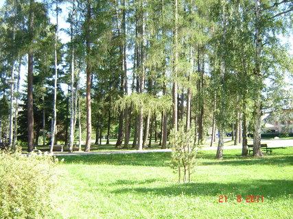 FOTKA - Hamzův park a arboretum Luže - Košumberk-...,