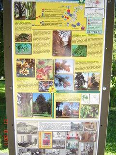 FOTKA - Hamzův park a arboretum Luže - Košumberk-.......,