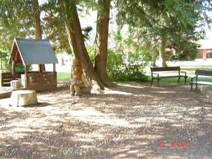 FOTKA - Hamzův park a arboretum Luže - Košumberk-......,,,..