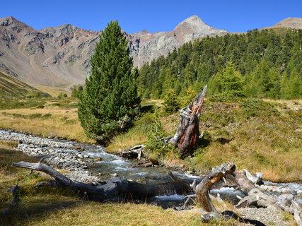 FOTKA - Zátiší v horském údolí