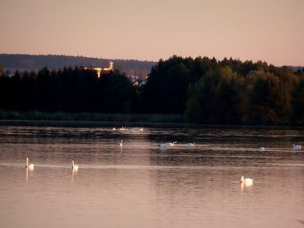 FOTKA - Labutí jezero