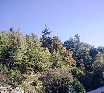 FOTKA - Podzim na zahrádce