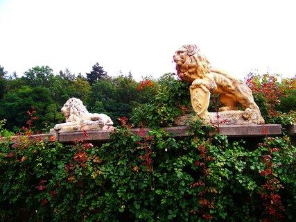 FOTKA - strážci růží u rybníka (naproti je obchod se zahradnickými potřebami)