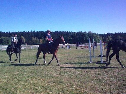 FOTKA - Jízda na koních