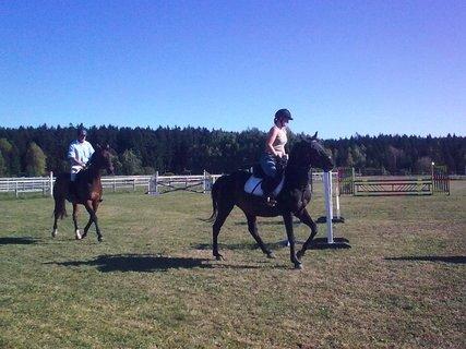 FOTKA - Jizda na koních 1