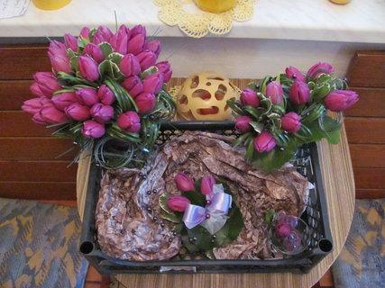 FOTKA - tulipan