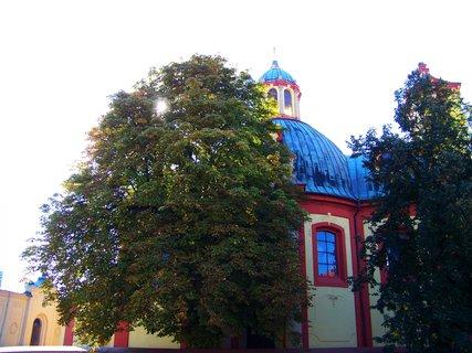 FOTKA - kostel Kunratice, slunce ve větvích kaštanu.,,,