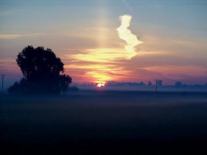 FOTKA - Zamlžené svítání