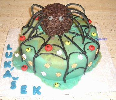 FOTKA - 2.pavouček