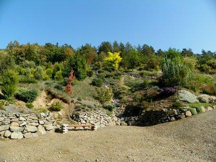 FOTKA - Arboretum  MAKČU PIKČU