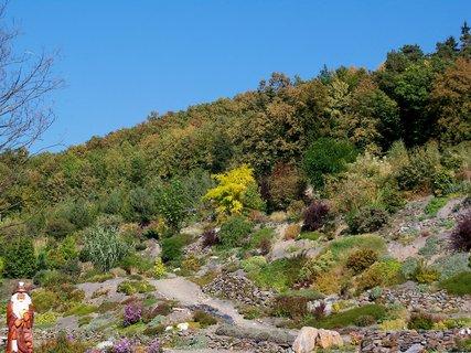 FOTKA - Podzim v arboretu Makču Pikču