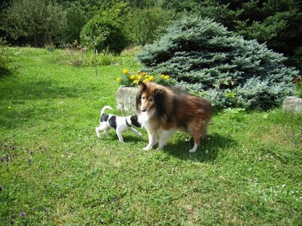 FOTKA - Tiggy a Bublina