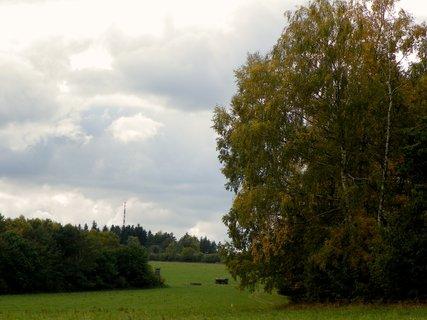 FOTKA - Podzim .