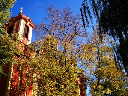 FOTKA - boční část kostela s vrbou ...