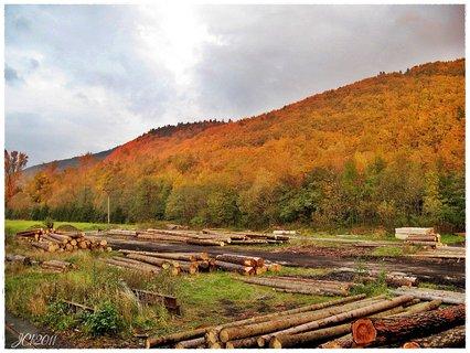 FOTKA - Krásy podzimu