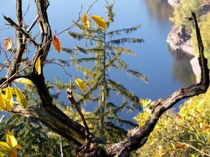 FOTKA - Barvy podzimu u přehrady