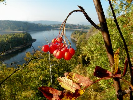 FOTKA - Podzim umí vykouzlit krásné barvy