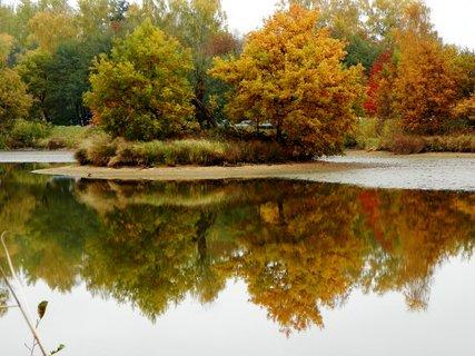 FOTKA - Podzimní paleta barev