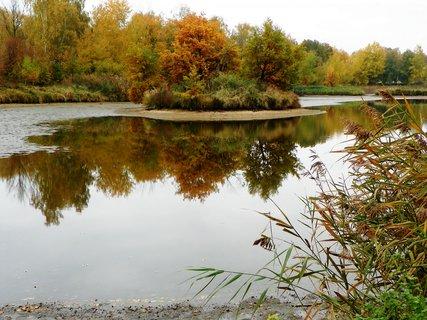FOTKA - Podzimní výlov Bohdaneč