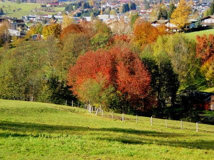 FOTKA - Podzimní procházka k Ritzensee 10