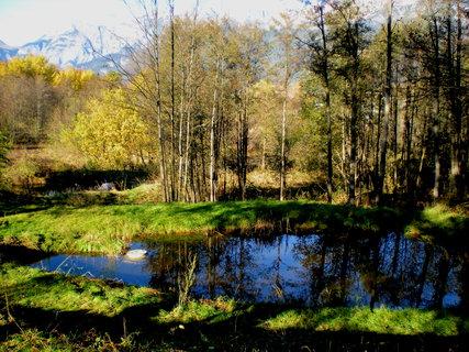 FOTKA - Procházka k Ritzensee 24