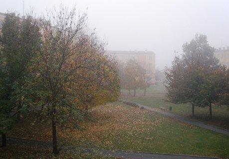 FOTKA - Mlha se včera držela celý den