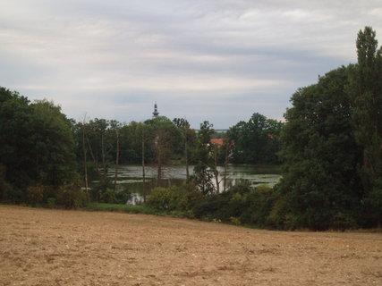 FOTKA - z podzimní procházky . .