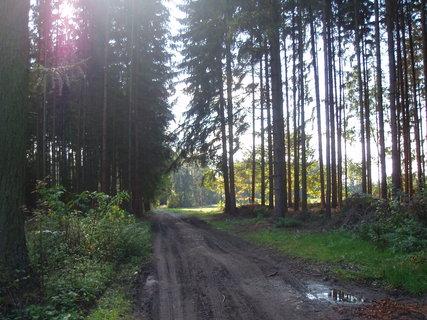 FOTKA - z podzimní procházky . . .