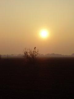 FOTKA - západ slunce v mlžném oparu 31.10.