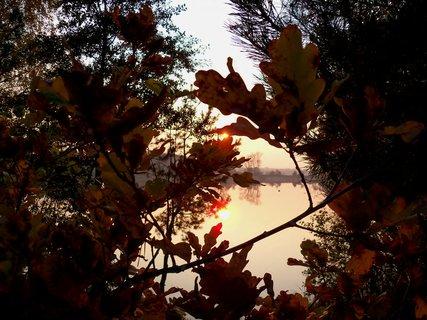 FOTKA - Listopadové sluníčko