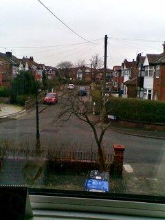 FOTKA - Pohled z měho okna na STROM a okolí..