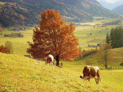 FOTKA - Procházka okolo Ritzensee a na vyhlídku Kühbühel 16