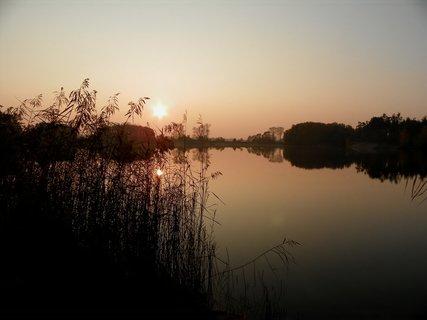 FOTKA - Tam z vodou v rákosí