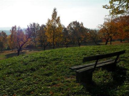 FOTKA - Listopadová chvilka odpočinku