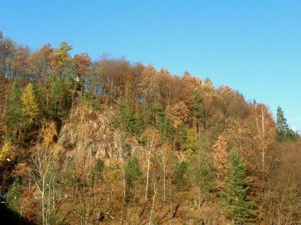 FOTKA - Lesy nad přehradou