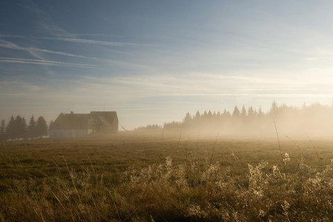 FOTKA - Mlha v Horn� Hal�i