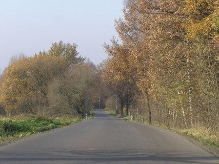 FOTKA - cesta domů..,-