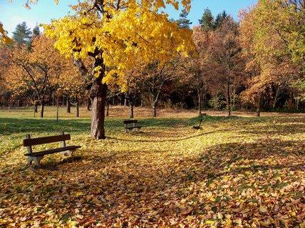 FOTKA - Podzim je krásný