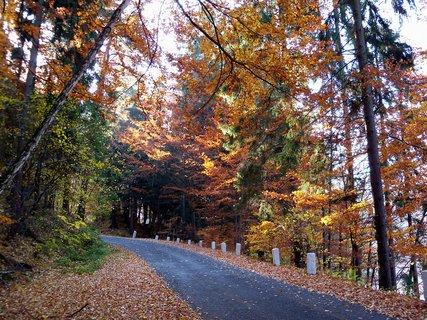 FOTKA - Podzim u přehrady .