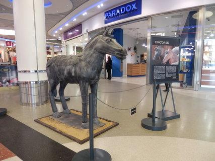 FOTKA - terakotový kůň v životní velikosti zavítal do Nákupního centra Eden