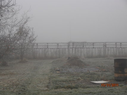 FOTKA - Mlha a námraza 15.11.