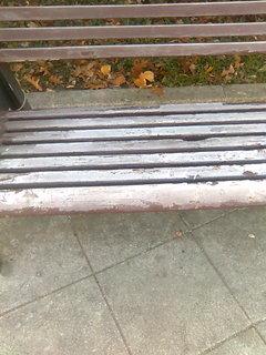 FOTKA - Namrzlá lavička