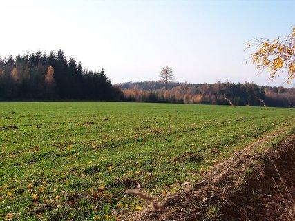 FOTKA - ♫ Barevný podzim
