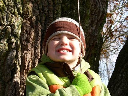 FOTKA - Zoo-Mega strom 2