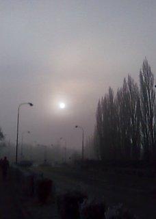 FOTKA - *Mlhavé ráno*