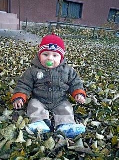 FOTKA - Synovec a  listí