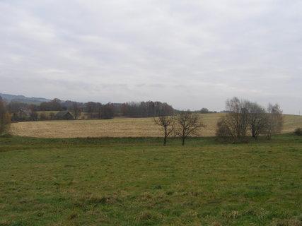 FOTKA - pole už je  holé